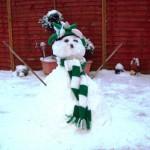 Snowy, Hibs fan fae Sunderland